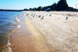 Breezy Point Marinas